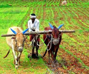 किसान मोर्चा संघटन वाढविणे स्पर्धा