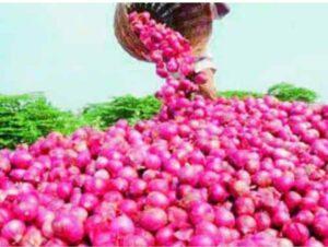 कांदा निर्यातबंदी : कांदा पुन्हा रडवणार