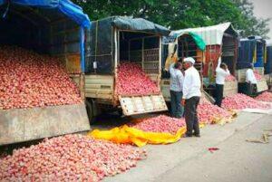 कांदा निर्यात बंदी विरोधात शेतकरी आक्रमक. . .