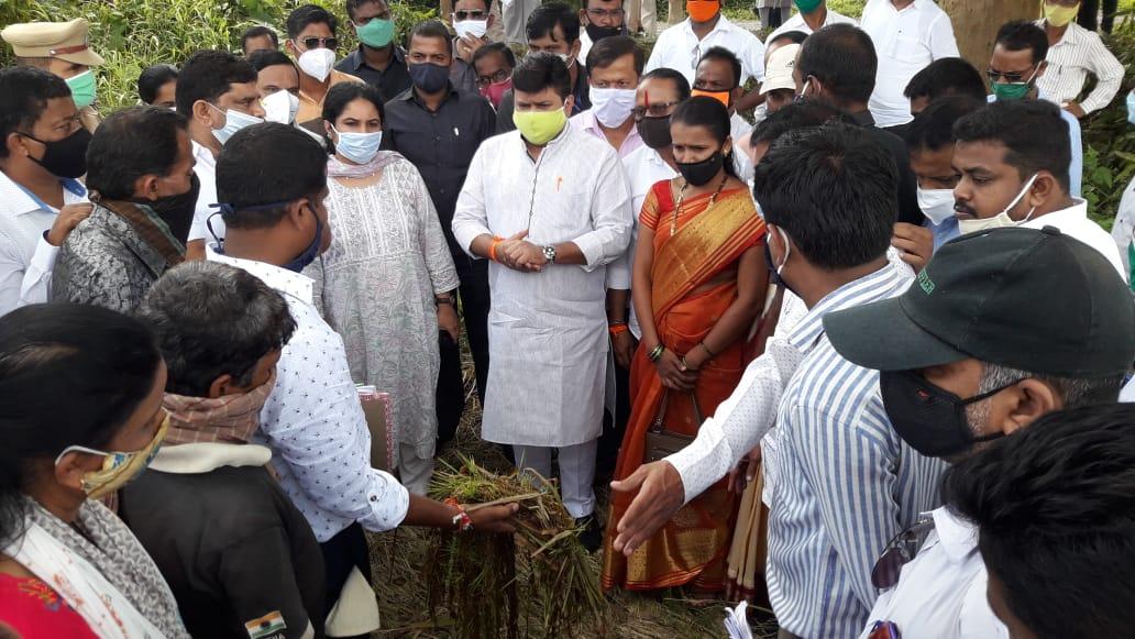 पालकमंत्री उदय सामंत यांनी आ. वैभव नाईक यांच्या समवेत कुडाळ तालुक्यातील भात शेतीची केली पाहणी
