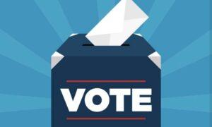 सिंधुदुर्गात ६६ ग्रामपंचायतीसाठी सरासरी ७० टक्के मतदान