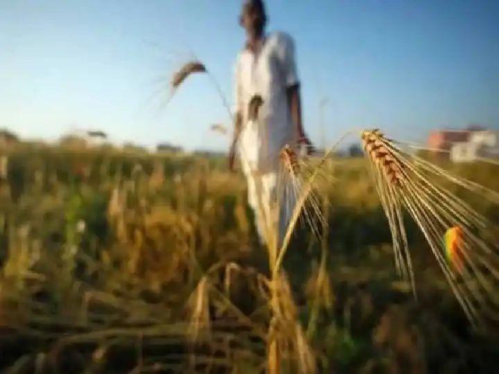 गेल्या 11 महिन्यात 2270 शेतकऱ्यांच्या आत्महत्या…