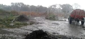 राज्यात २६ हजार हेक्टरवरील पिके नष्ट ; अवकाळी पाऊस, गारपिटीचा तडाखा