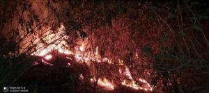 शिरोडा वेळागर येथिल देव लींगेंश्र्वर मंदिर च्या मागे अचानक लागली आग