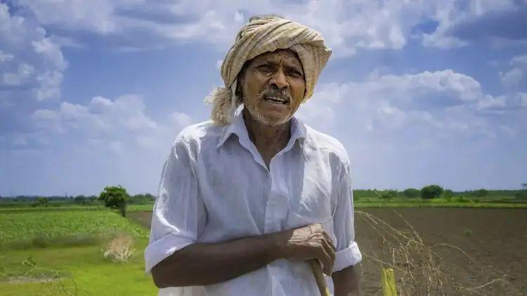 शेतकरी असल्याचा दाखला कसा काढायचा? अर्ज कुठे करायचा?