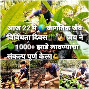 एका चिमुकल्याने एक हजार झाडें लावण्याचा केला संकल्प पूर्ण