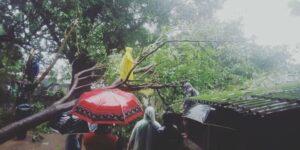 Read more about the article कणकवलीत वादळी वाऱ्यासह पाऊस