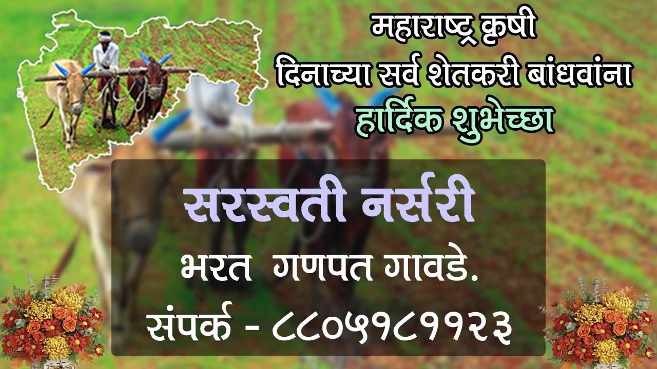 महाराष्ट्र कृषी दिनाच्या समस्त शेतकरी बांधव आणि बागायतदारांना हार्दिक शुभेच्छा! – सरस्वती नर्सरी