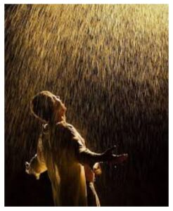 Read more about the article तू माझा पाऊस हो
